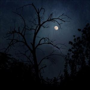 Silent_Moon_by_o_BlueMoon_o